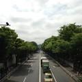 Photos: 越中島1丁目交差点歩道橋より南東(江東区)越中島駅 ・豊洲