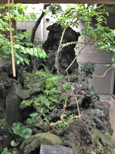 於三稲荷神社・古木弁天社(江東区牡丹)