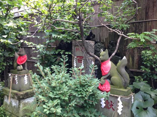 於三稲荷神社(江東区牡丹)