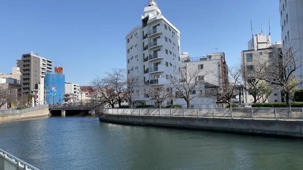 21.03.10.尾張藩下屋敷跡(江東区)