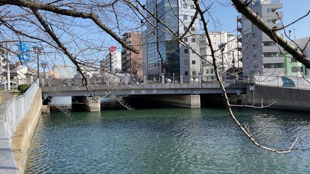 尾張藩下屋敷跡(江東区)