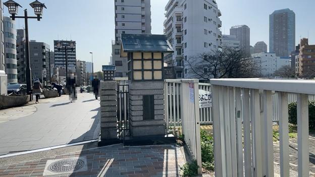 黒船橋北詰西側(江東区)