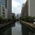 Photos: 大島川西支川(江東区佐賀)御船橋上より南