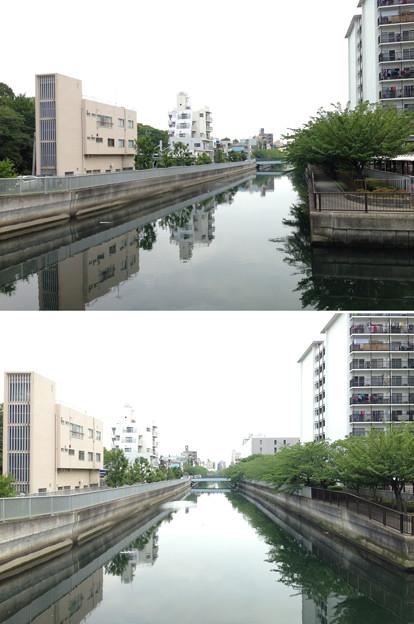 仙台堀川 清川橋より東(江東区佐賀)