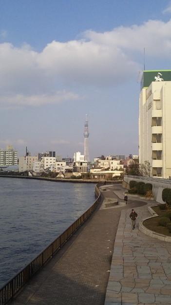 Photos: 清洲橋西詰より北 隅田川テラス(江東区清澄)