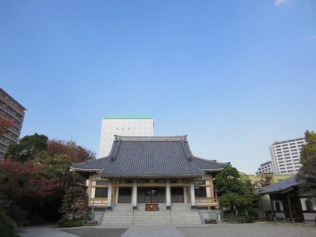 霊巖寺(江東区白河)