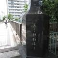 Photos: 大横川 菊川橋西詰南側(江東区)