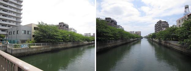大横川 菊川橋より南(江東区)左、東詰南側 牧野豊前守下屋敷跡