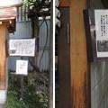 猿江神社(江東区猿江)馬頭観音社