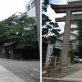 猿江神社(江東区猿江)石鳥居