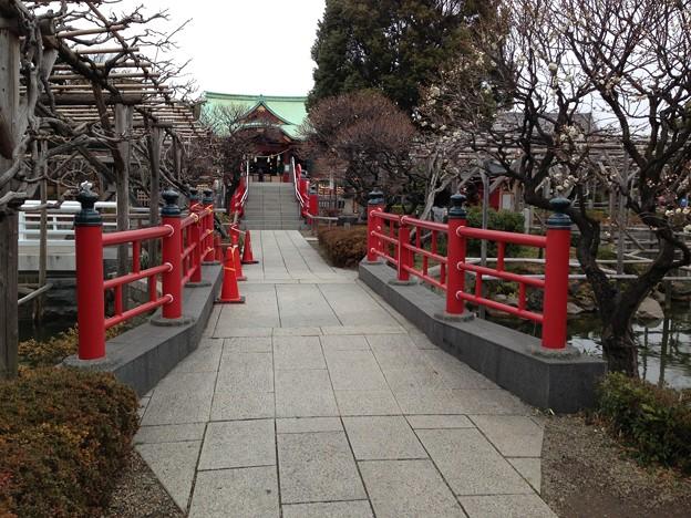 亀戸天神社(江東区亀戸)太鼓橋 平橋