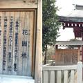 亀戸天神社(江東区亀戸)花園社
