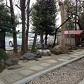 亀戸天神社(江東区亀戸)亀井戸 ・おいぬさま