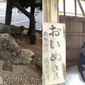 13.02.19.亀戸天神社(江東区亀戸)亀井戸 ・おいぬさま