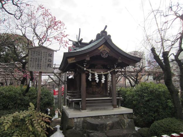 亀戸天神社(江東区亀戸)紅梅殿