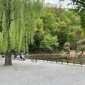 赤塚城 外堀跡(板橋区)