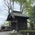 新藤楼 移築玄関(板橋区)赤塚城外堀跡