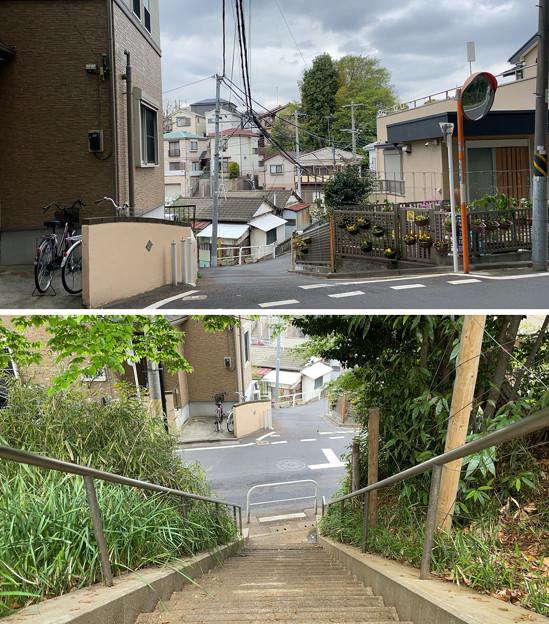Photos: 赤塚城跡(板橋区)三郭説・西