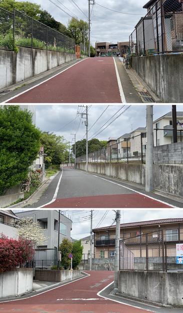 赤塚城跡(板橋区)三郭説・南西