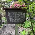 乗蓮寺(板橋区)旧藤堂家染井屋敷石造物