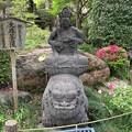 乗蓮寺(板橋区)旧藤堂家染井屋敷石造物4