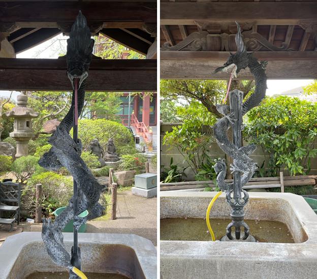 乗蓮寺(板橋区)手水舎