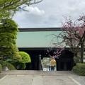 乗蓮寺(板橋区)山門