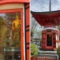Photos: 乗蓮寺(板橋区)福寿観音