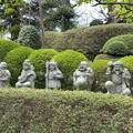 Photos: 乗蓮寺(板橋区)七福神