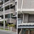 Photos: 乗蓮寺(板橋区)門前 ・北方向