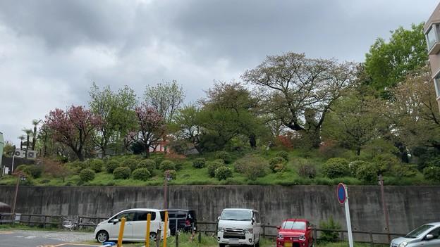 赤塚不動の滝(板橋区)南西