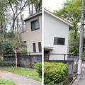 Photos: 赤塚城跡(板橋区)外郭説 ・谷