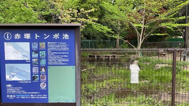 赤塚城跡(板橋区)外堀跡