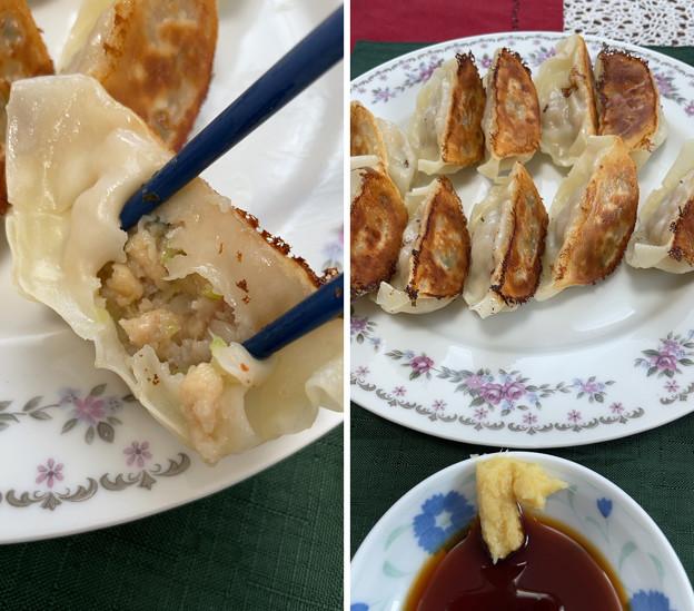 信州ご当地餃子――生姜