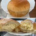 Photos: 岡崎 ごちそうクリームパン