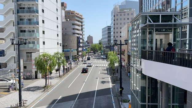柳通り(藤沢市)