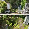 Photos: 鎌倉十井 泉ノ井(鎌倉市)