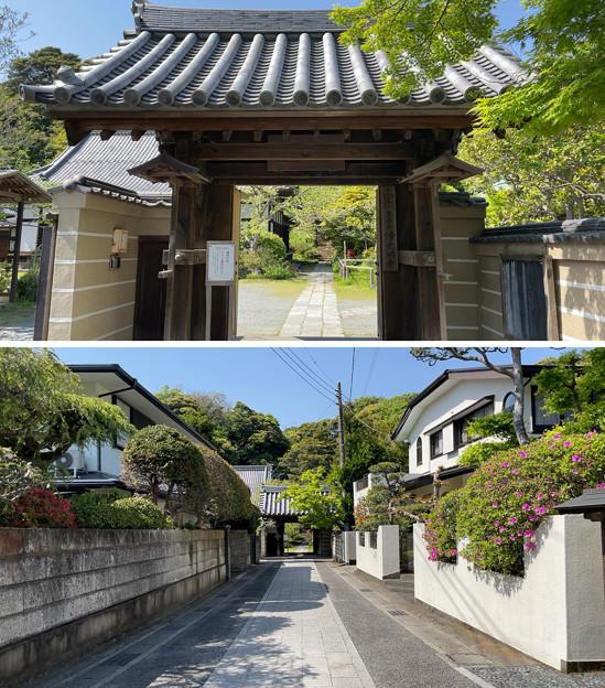 浄光明寺(鎌倉市)参道・山門