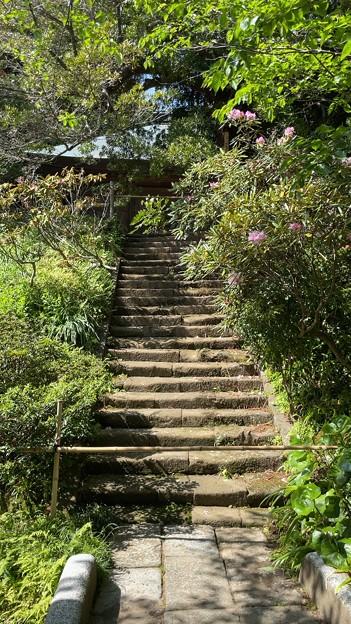 浄光明寺(鎌倉市)境内半分?、墓所封鎖……