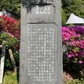 扇谷上杉管領屋敷迹(鎌倉市)