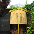 Photos: 13.06.13.主馬盛久頸座(鎌倉市)