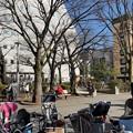 Photos: 男谷精一郎屋敷跡(墨田区両国4丁目)両国公園 勝海舟生誕之地