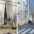 Photos: 21.03.03.津軽越中守屋敷跡(墨田区)
