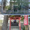 Photos: 猿江神社(江東区)背面