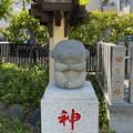 猿江神社(江東区)神猿