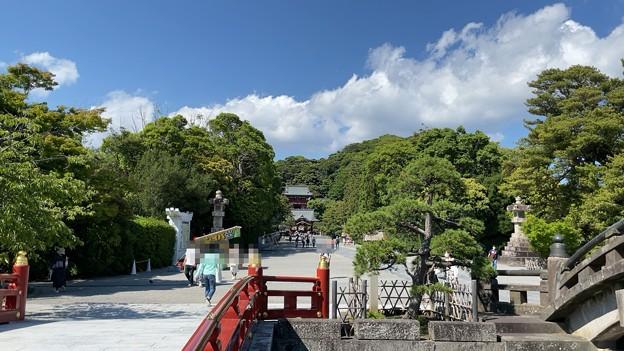 鶴岡八幡宮(鎌倉市)