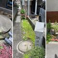 鎌倉十井 銚子ノ井(鎌倉市)