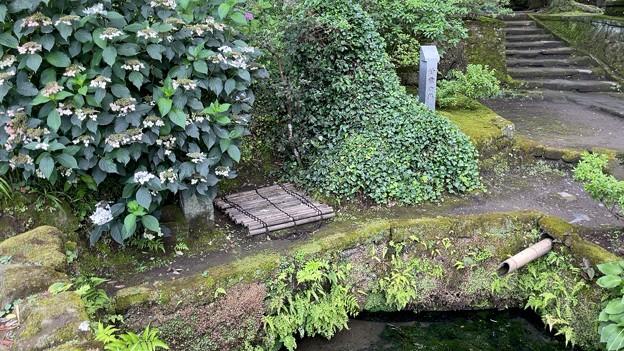 浄智寺(鎌倉市)鎌倉十井 甘露ノ井
