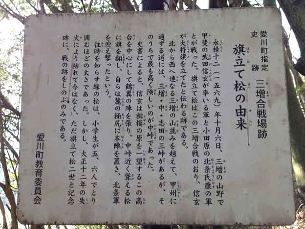 旗立て松(東名厚木カントリー倶楽部。愛川町)