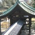 湯島聖堂(文京区)入徳門